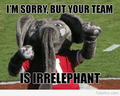 I'm Sorry But Your Team is Irrelephant