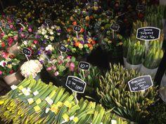 Flower Market-Amsterdam