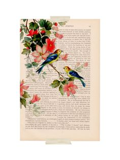 So pretty for vintage storybook theme | Dictionary bird art print vintage BIRDS and by ExLibrisJournals, $9.00