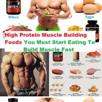 High Protein Muscle Building Foods