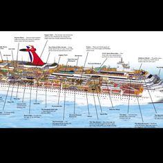 carnival legend deck plans pdf - Google Search | Cruising ...