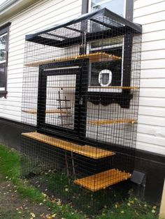 Cool Catios for Your Feline Friend This catio is the perfect example of a window perch gone mega.This catio is the perfect example of a window perch gone mega. Cage Chat, Outdoor Cat Enclosure, Diy Cat Enclosure, Reptile Enclosure, Cat Cages, Cat Perch, Cat Playground, Outdoor Cats, Cat House Outdoor