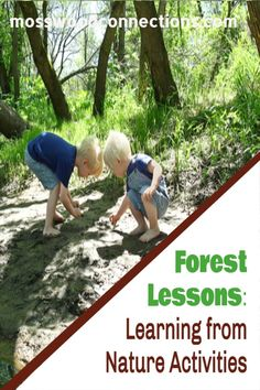Forest Lessons_ Learning from Bird Nature Activities #mosswoodconnections #naturescience #forestschool #outdoorlearningactivities #educational #forestactivities Learning Tips, Learning Games For Kids, Educational Activities For Kids, Outdoor Learning, Forest School Activities, Nature Activities, Sensory Activities, Lessons Learned, Outdoor Adventures
