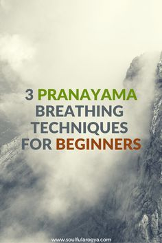 3 Pranayama Breathing Techniques for Beginners - Yoga Pranayama, Kundalini Yoga, Ashtanga Yoga, Sudarshan Kriya, Vinyasa Yoga, Yoga Beginners, Meditation For Beginners, Meditation Techniques, Yoga Breathing Techniques