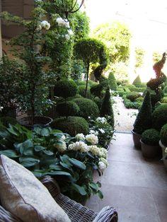 City garden ▇  #Home ❀ #Landscape #Design via Christina Khandan, Irvine California ༺ ℭƘ ༻