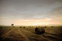"""Tableau """"Campagne paisible"""" par Akimoss http://www.my-art.com/akimoss/designs/campagne-paisible"""