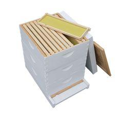 Langstroth Medium Beginner Hive Frames.png