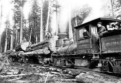 Logging Train 28x42 Giclee on Canvas