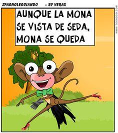 aunque la #mona se vista de seda,mona se #queda