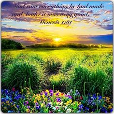 Having reviewed his creative works, Jehovah God announced the beginning of a seventh day—not a 24-hour day, but a long period of time during which he has rested from further works of earthly creation. (Gen. 2:2) God's rest day still has not ended. (Heb. 4:9, 10) The Bible does not reveal exactly when it started. It was some time after the creation of Adam's wife, Eve, about 6,000 years ago. Ahead of us lies the Thousand Year Reign of Jesus Christ, which will ensure the fulfillment of God's…