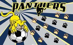 Panthers-45515 digitally printed vinyl soccer sports team banner. Made in the USA and shipped fast by BannersUSA. www.bannersusa.com