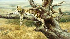 Dick van Heerde - Wildlife Art olieverfschilderijen