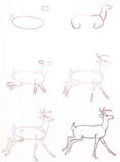 Comment dessiner un cerf trop facile dessins - Comment dessiner un cerf ...