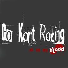 Go Kart Racing Is In My Blood Hoodie
