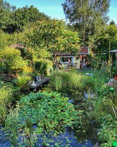 Sommergruß mit Hüttchen...👋🏡 #sommersonnesonnenschein ...💚 #gartenglück #gardening #sommergarten #landhausstil #landhausgarten #pflaumenkuchen #hiergeradeso #sommerimseptember #all_gardens #garden_styles #green #thegreenlite #septmberschaetze