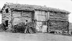 Vintage photos | spending Easter with the lads in 1906 | Norway Milk The Cow, Norway Spruce, Farm Unit, Online Archive, The Outfield, Small Farm, Local History, Building Materials, Blacksmithing