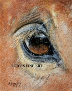 Horse Print Mustang Horse Eye Art Giclee by Roby Baer PSA - kunst - Horse Small Paintings, Animal Paintings, Horse Paintings, Pastel Paintings, Horse Drawings, Animal Drawings, Art Aquarelle, Horse Anatomy, Horse Artwork