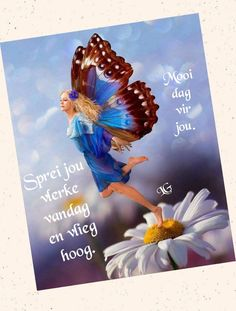 Goeie More, Religious Quotes, Afrikaans, Good Morning, Motivational Quotes, Beautiful Pictures, Sayings, Memes, Buen Dia