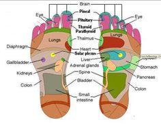 DIY Body Detox Foot Bath - News - Bubblews