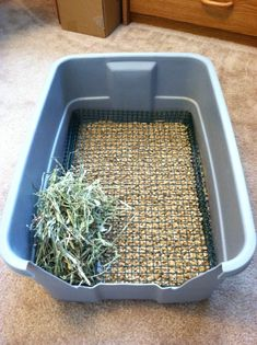Pigs n Buns Small Pet Rescue: Non-diggable Bunny Litter Box Bunny Cages, Rabbit Cages, House Rabbit, Rabbit Cage Diy, Rabbit Litter Box, Pet Rabbit, Dog Litter Box, Litter Pan, Small Rabbit