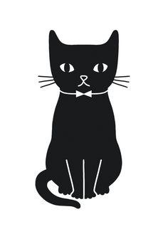 CAT - Audrey Jeanne