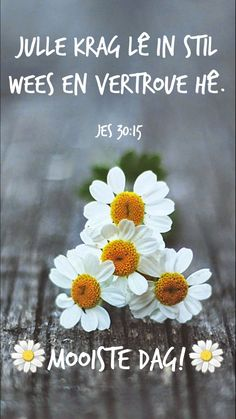 Morning Blessings, Good Morning Wishes, Lekker Dag, Afrikaanse Quotes, Goeie More, Prayer Book, Special Quotes, Prayers, Blessed