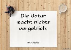 Die Natur macht nichts vergeblich. ... gefunden auf https://www.geheimekraft.de/spruch/373