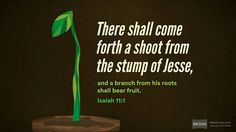 Isaiah 11:1