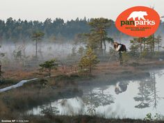 wilderness-and-the-future-of-nature-conservation-in-europe by Zoltan Kun via Slideshare