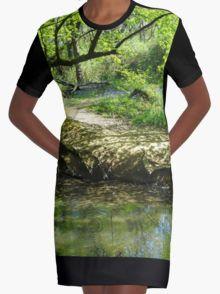 May River Graphic T-Shirt Dress 20% off today use code CARPE20 #redbubble #newfromredbubble #redbubbledress #digiprint #printeddress #print #pattern #patterneddress #graphicdress #graphic #sublimation #dyesublimation #alternative #fashion #ss16 #indie #indiedesign #design #tshirtdress #minidress #women #fashion #newdress #newclothes
