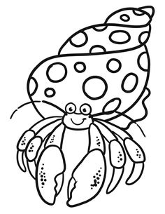 Cute And Funny Hermit Crab Coloring Pages