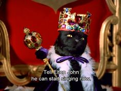 """Community post: the ultimate dating guide, as told by salem from """"sabrina the teenage witch"""" Funny Comebacks, Funny Memes, Hilarious, Funny Quotes, Tv Quotes, Cat Qoutes, Crush Quotes, Salem Cat, Salem Saberhagen"""