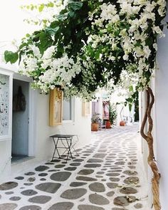 ✨ Dreaming of #Greece via our #wanderlust Pinterest board