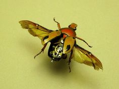 "Robot-like insects, insect-like robots, stuff of science fiction and fact. From Cronos to The Golden Compass, the insect/robot archetype has been used.  Biologists and engineers look to insect movement, design, and social behavior to inspire new technology and applications.  NASA scientists are making walking rovers and ""swarm theory"" probes for planetary exploration.  We're finding the most efficient design features come from nature.  These creatures do not function, but playfully imply such."
