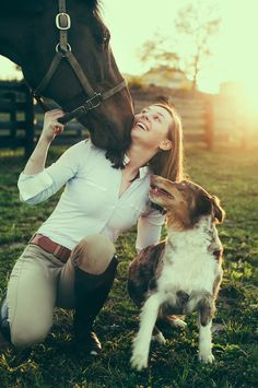 Horse and puppy love