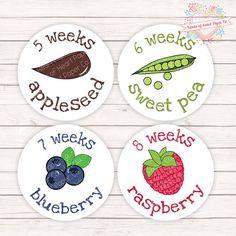 Pregnancy Stickers - Pregnancy Belly Stickers - Pregnancy Week Stickers - Weekly…
