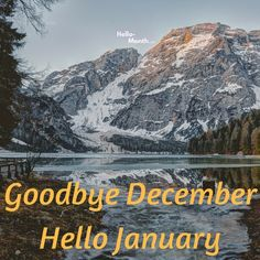 Free Goodbye December and Hello January Pictures January Month, Hello January, New Month, December, January Pictures, January Images, Cover Pics For Facebook, Seasons Months, Birth Flowers