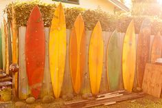 Surf board line up by Kevin Roche