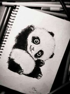 The panda has a question. and the pandas cute Amazing Drawings, Cute Drawings, Animal Drawings, Drawing Sketches, Pencil Drawings, Sketches Of Animals, Drawing Ideas, Drawing Lessons, Pencil Art