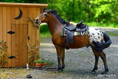 "This isn't a real horse! This is ""Rastus"", an 8 inch resin horse created by Resins by Randy. Artist Mindy Berg sculpted the mane and tail and did that amazing paint job and scene.  Pretty cool!"