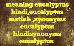 meaning eucalyptus hindi,eucalyptus matlab ,synonyms eucalyptus hindisynonyms eucalyptus Meaning of  eucalyptus in Hindi  SYNONYMS AND OTHER WORDS FOR eucalyptus  युकलिप्टुस→eucalyptus → → → → → → → → → → → → → → → Definition of eucalyptus a fast-growing evergreen Australasian tree that ha...
