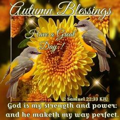 Autumn Blessings Have A Great Day autumn fall autumn quotes fall quotes goodbye summer hello fall hello autumn welcome autumn hello autumn quotes goodbye summer quotes hello fall quotes