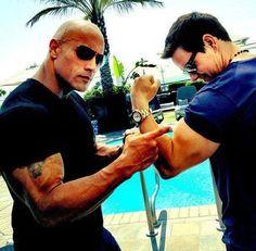 10 Dicas Matadoras Para Você Conquistar Hipertrofia Muscular    ~> http://www.segredodefinicaomuscular.com/10-dicas-matadoras-para-voce-conquistar-hipertrofia-muscular #Hipertrofia