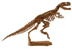 Science4you Excavaciones fósiles T-Rex - Juguete científico y educativo: Amazon.es: Juguetes y juegos