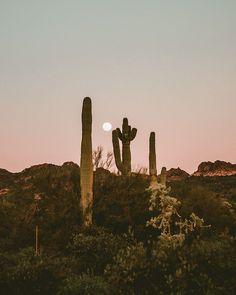 Uhrwerk Berlin – www.berlin time to roam the world Modelos Guess, Desert Aesthetic, Desert Dream, Desert Sunset, Life In Desert, Sonora Desert, Adventure Is Out There, Belle Photo, Wonders Of The World