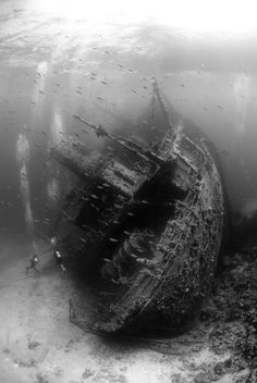 Sunken ship photo, in black and white. Gorgeous.