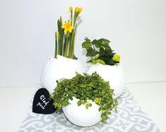 Gör ett påskägg i gips Eggs, Spring, Food, Egg, Meals, Egg As Food