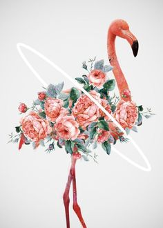 Buy Flamingo Art Print by Dániel Taylor. Worldwide shipping available at Society6.com. Just one of millions of high quality products available.