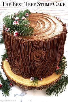 Best Dessert Recipes, Fun Desserts, Holiday Recipes, Cake Recipes, Fondant, Tree Stump Cake, Christmas Party Food, Christmas Desserts, Woodland Theme Cake