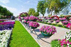 O maior jardim do mundo